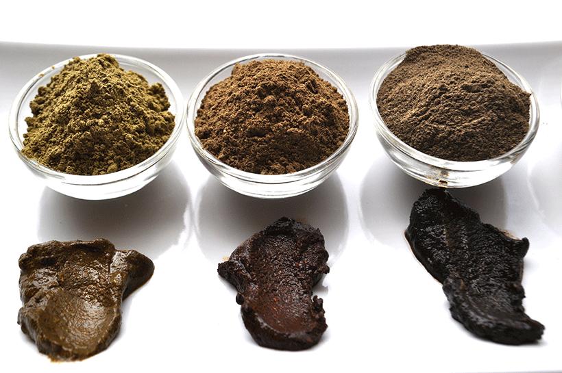 recette-coloration-vegetale-2