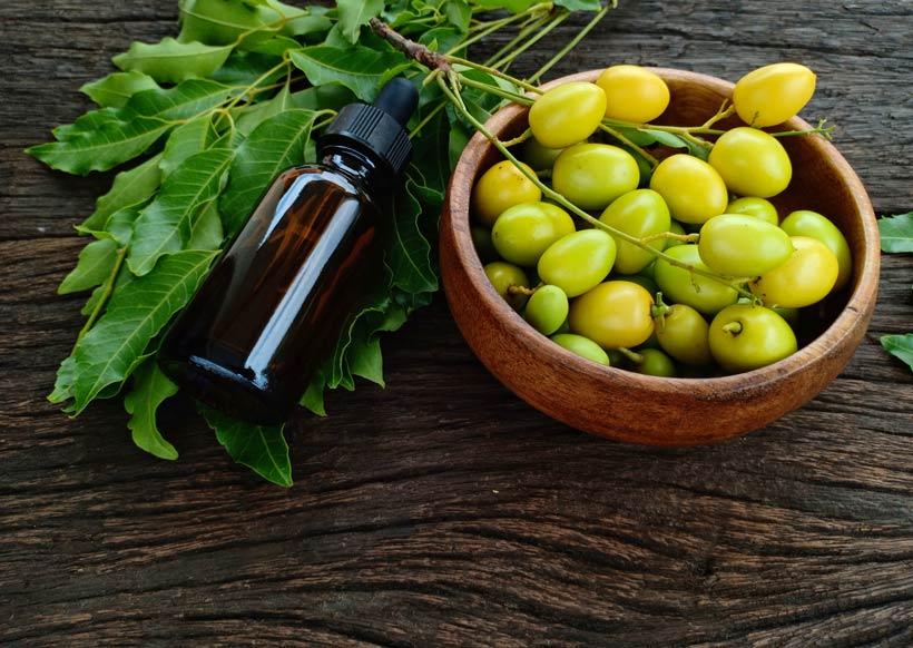 huile de neem-2