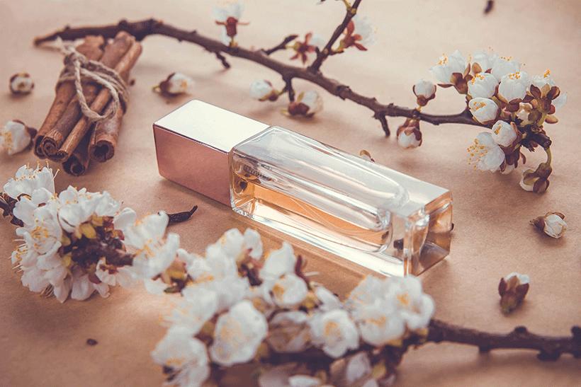 type-de-parfum-3